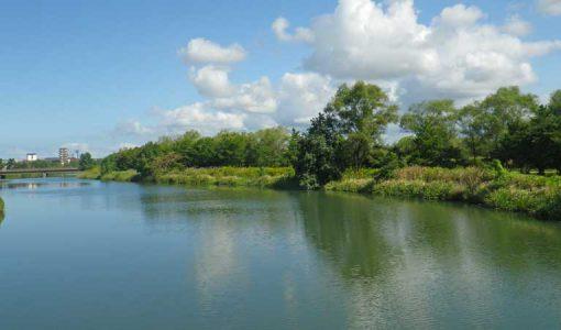 大宮川の写真