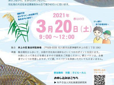 2021年3月20日水辺の生物多様性ホットスポットをさがそう